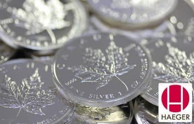 Die Wertermittlung von Platinmünzen